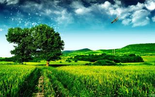 Gambar Pohon Imajinasi